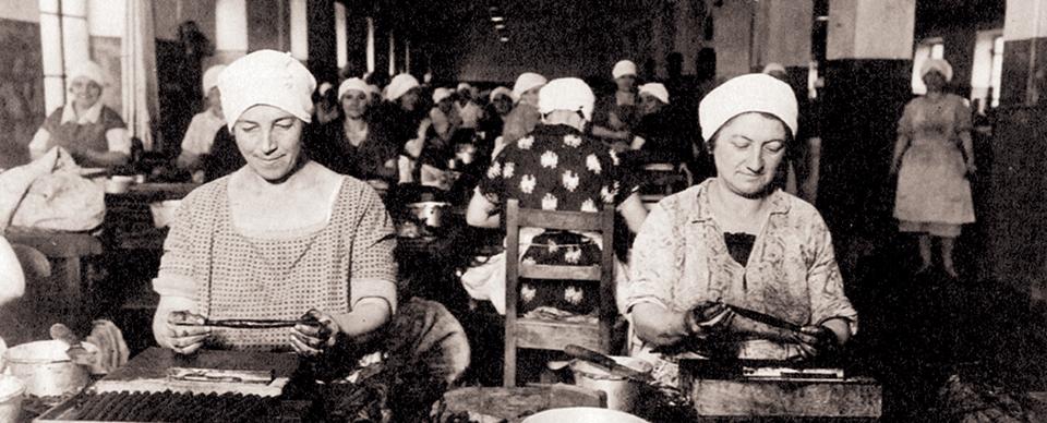 Da Donne a Torino nel Novecento, di Marcella Filippa.